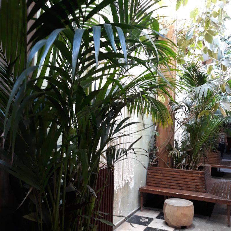 terrasse-imaginezvous-conseil-en-image